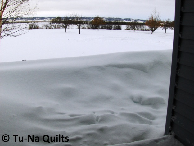 ND snow 1a
