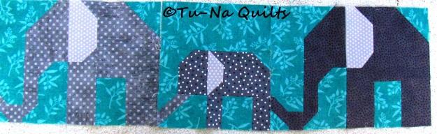 elephant 6a